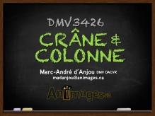TEMPLATE-DIAPO-FRONT CRANE-COLONNE