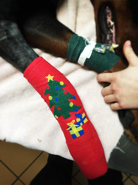 Bandage pour noel