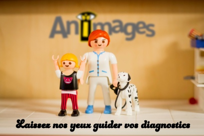Animages diagnostic_flou