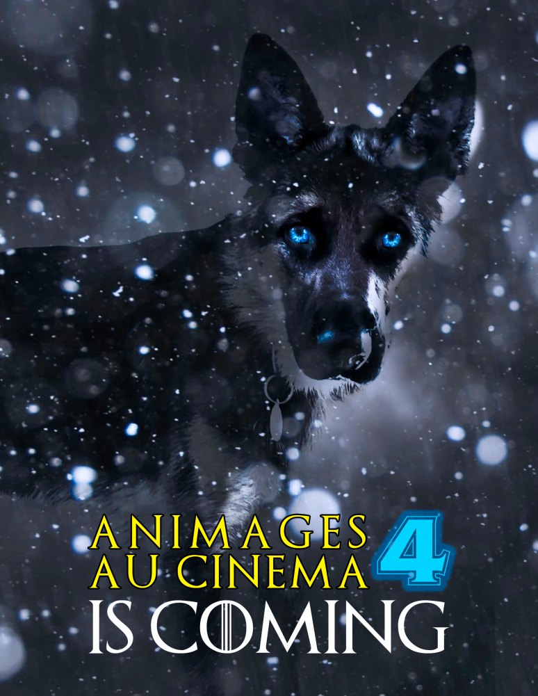 annonce cinema 4 is coming.jpg