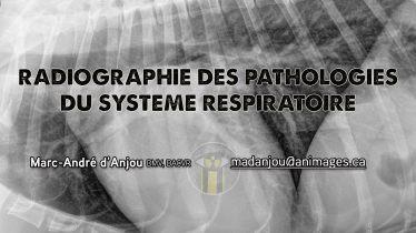 titre conf respiratoire